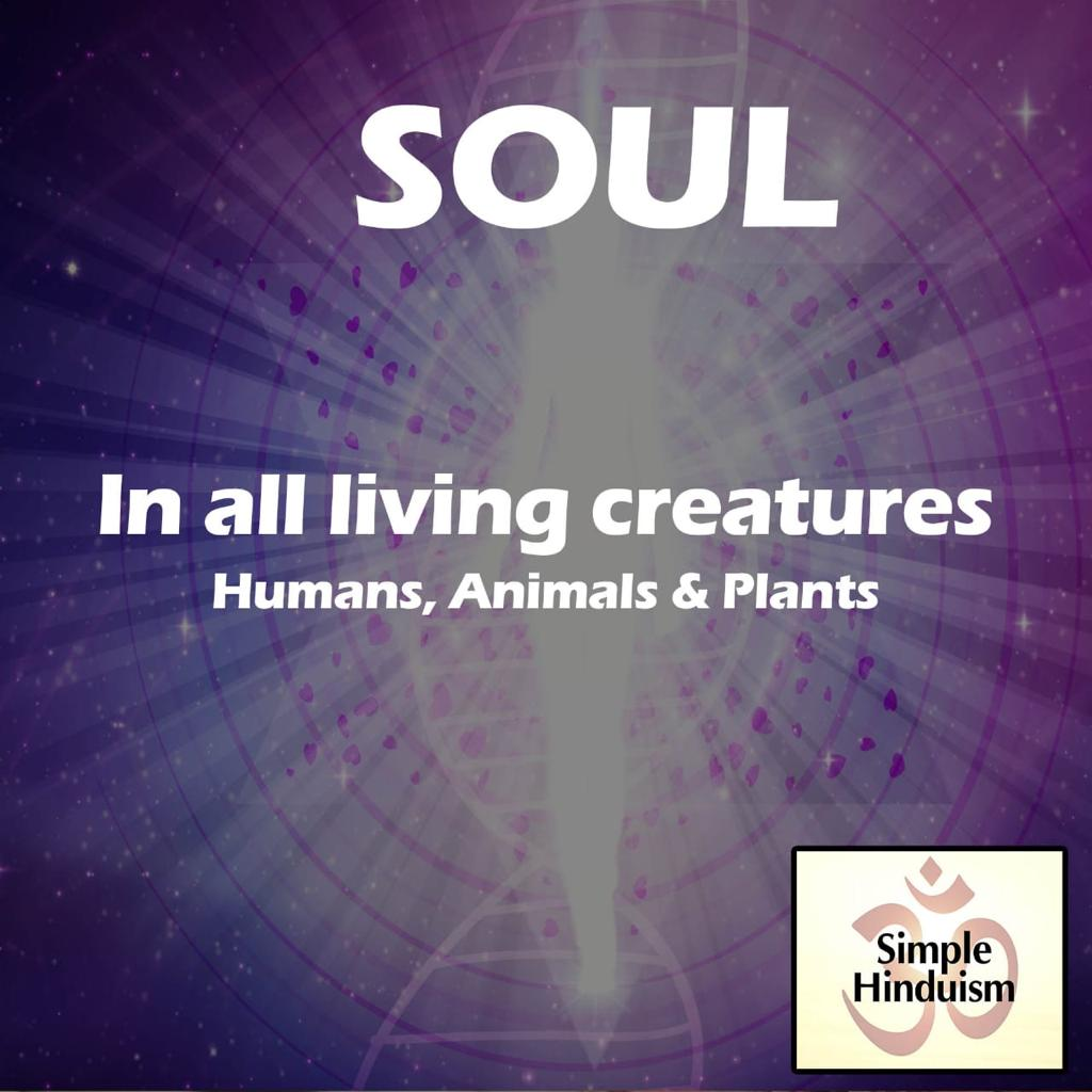 Soul in hindu religion