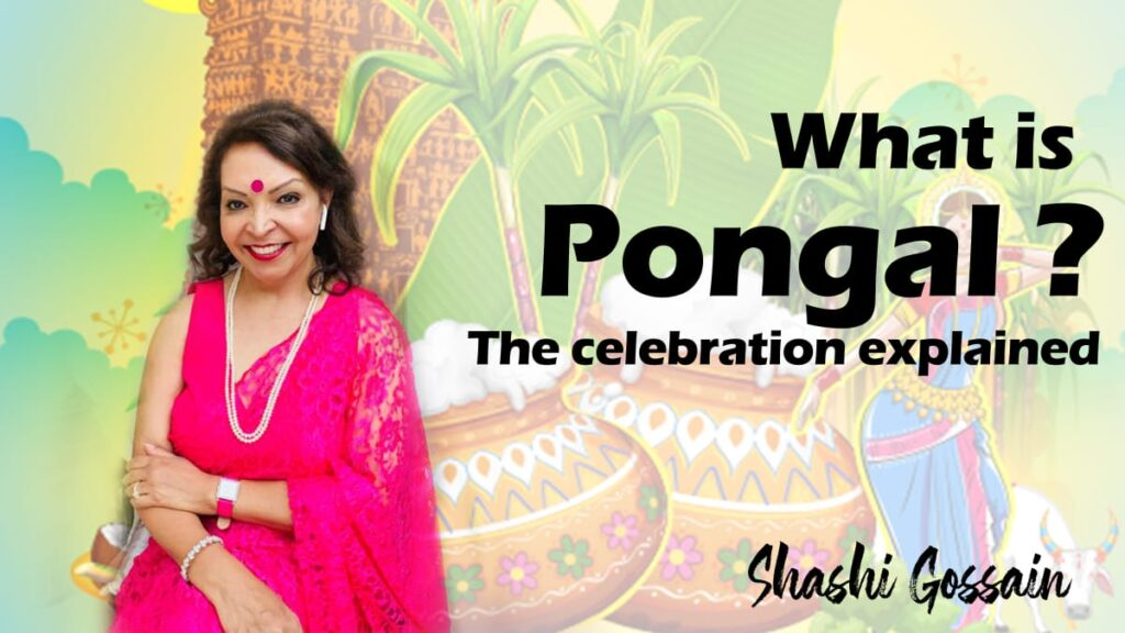 How is Pongal celebrated?